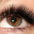 Special Offer For Volume Lashes!